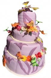 Torta č.117, 9 kg